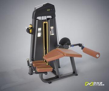 تصویر دستگاه بدنسازی پشت پا خوابیده Dhz مدل Evost Pro-E1001